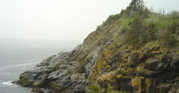 One of the White Heads on Monhegan Island.