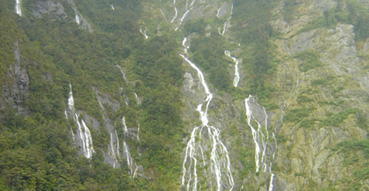 Some of the countless waterfalls in Milford Sound.