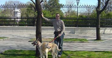 Eric and the dogs in along the Ringstrasse.